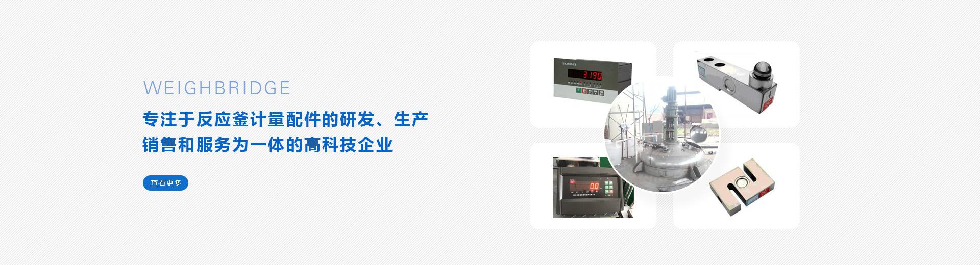 惠州电子地磅